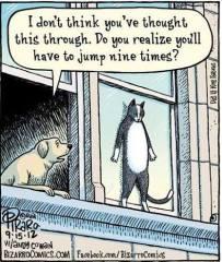 Cat's 9 Lives fr Wayne Clarke